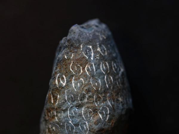 Oeufs à pétroglyphes