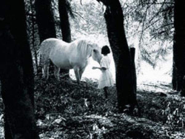 1994_2005_Enfance avec Paysage_3