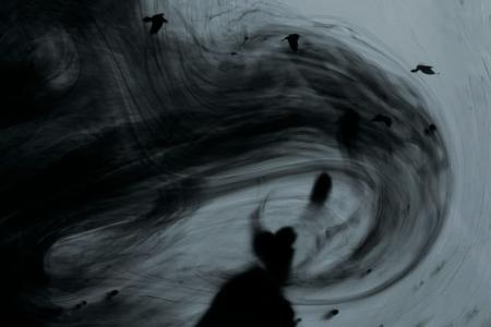 2010_Les eaux, paysages de l'ombre_I