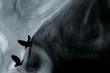 2010_Les eaux, paysages de l'ombre_VI