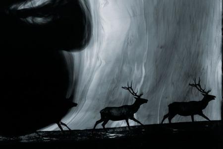 2011_Les eaux,paysages de-l'ombre, V