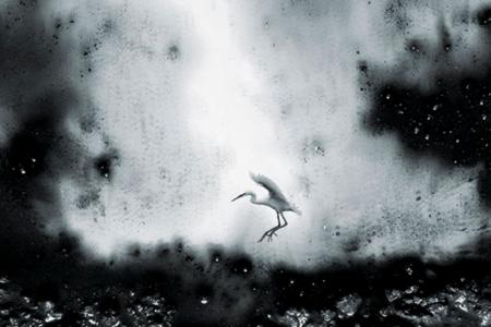 2013_Les eaux,paysages de l'ombre, III