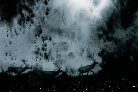2013_Les eaux,paysages de l'ombre, IV